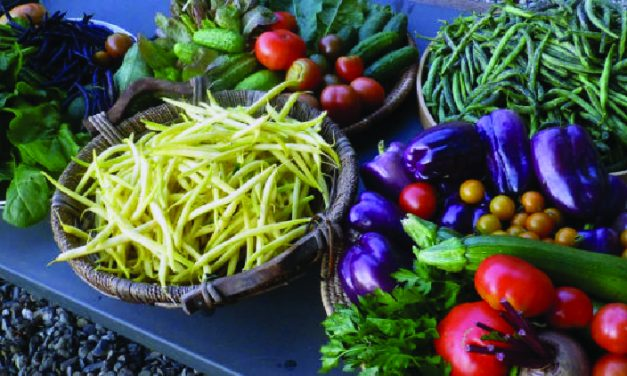 Eating a plant based diet could reduce risk of heart failure